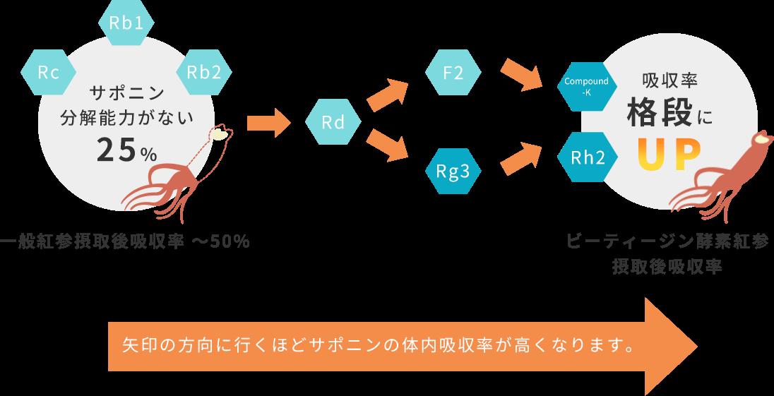 吸収効果の図